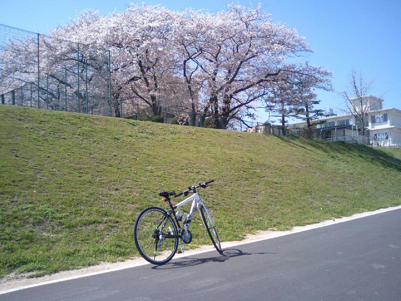 ただいま武庫川北上中!