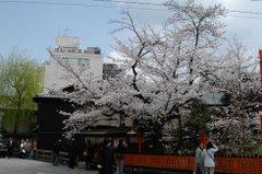 080416_sirakawa_06