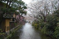 080416_sirakawa_12
