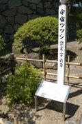 080630_uchututuji