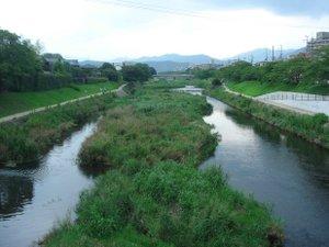 090814_kamogawa
